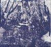 Fantasy empire | Lightning Bolt