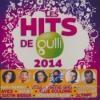 Hits de Gulli 2014 (Les)