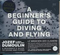 A beginner's guide to diving and flying