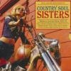 Country soul sisters : women in country music 1952-78