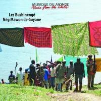 Bushinengé - neg mawon de Guyane (Les)