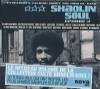 Shaolin soul : vol.3