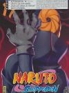 Naruto Shippuden : volume 17