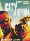 City of gun