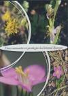 Flore menacée et protégée du littoral Basque