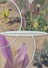 Flore menacée et protégée du littoral Landais