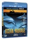 Océan sauvage 3D