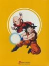 Dragon ball : coffret 3