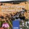 Fleurs et plantes des Hautes-Fagnes sur votre chemin