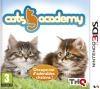 Cats academy 2