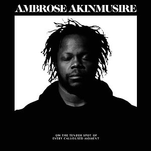 On the tender spot of every calloused moment | Akinmusire, Ambrose (1982-....).