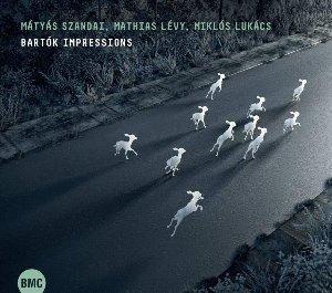 Bartok impressions / Matyas Szandai, cb | Levy, Mathias. Musicien