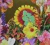 Paradis artificiel[s] | Philippe Cohen Solal (1962-....)